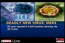 Newly discovered virus kills 45 worldwide