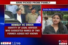 Did Srinivasan appoint the two-member IPL probe panel?
