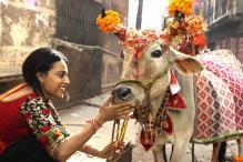 Swara Bhaskar to play an idealistic wife in 'Sabki Bajegi Band'