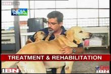 Bangalore: NGO for stray dogs rehabilitates man's best friend