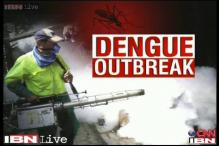 Dengue scare: Precautions that need to be taken