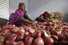 Onion prices at Lasalgaon Mandi fall as kharif crops arrive, down by Rs 12/kg to Rs 30/kg