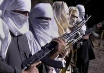 Man who ordered attack on Malala elected new chief of Pakistani Taliban