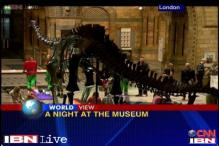 Watch: London museum offers chance to sleep with dinosaurs