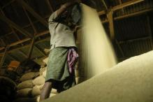 Geographical Indications Registry asks agri-export body to include MP as Basmati growing area