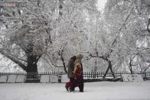 Kashmir Valley receives fresh snowfall, school closed