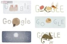 Rufous Hummingbird, veiled chameleon, dung beetle, Japanese macaque, moon jellyfish, puffer fish in 6-in-1 Earth Day Google doodle