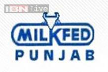 Milkfed Punjab hikes curd, cheese prices