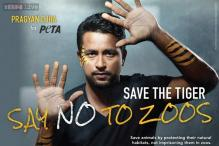 Cricketer Pragyan Ojha appears in PETA ad as a caged tiger