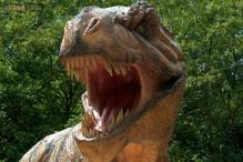 Scientists discover dinosaur T-Rex's cousin P-Rex was stealthier and faster