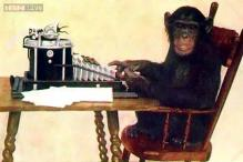 Chimpanzees prefer silence to Western pop, but just love African and Indian music, study says