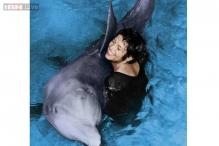This male dolphin fell in love with a female researcher!
