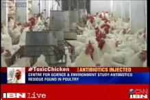 Delhi: Antibiotic residues found in 40 pc chicken samples