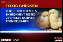 Health scare: Antibiotics found in 40 per cent chicken samples