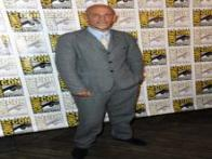 Benedict Cumberbatch as a penguin; Megan Fox as a turtle: Comic-Con 2014 was studded with Hollywood stars