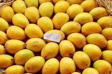 Alphonso mango ban: EU team visiting India in September