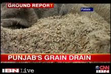 Tonnes of food grain stored out in the open in Punjab