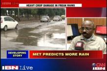 Monsoon has revived across north India: MET department director