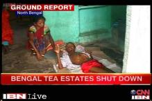 WB: 5 tea gardens shut, workers dying of hunger, sell children to survive