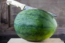 Connecticut man arrested after stabbing a watermelon in a 'passive-aggressive' manner