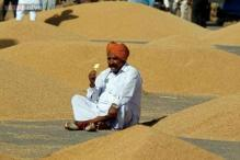 India to free up extra 10 million tonne wheat in open market
