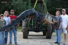 Gigantic 15-feet long, 1k-pound alligator caught by a family in Alabama sets a world record!