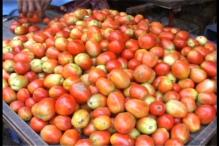 Thieves steal 75 kg tomatoes from a vegetable market in Dausa
