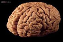 Brain dead man's organs donated in Kozhikode