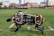 Watch: MIT's Cheetah robot that sprints like Usain Bolt