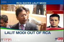 Rajasthan Cricket Association removes Lalit Modi as chief