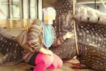 Australians outrage over photos of woman posing with a whale shark being skinned in Malaysia