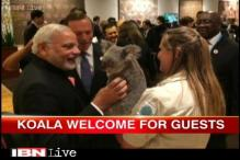Watch: Leaders busy brainstorming at G20 summit, spouses have a day out at wildlife sanctuary