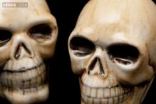 'Plastic' Halloween skulls found in Connecticut by junk haulers turn out to be human remains