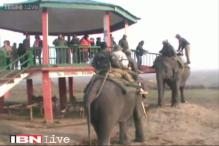Watch: Assam Chief Secretary enjoys elephant ride a day after the Bodo militant attack