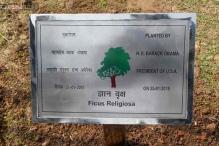 In pics: Barack Obama plants a sapling at Rajghat