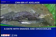 Australia tour diary: A date with snakes and crocodiles