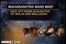 Traders upset as Maharashtra government bans beef