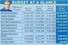 In pics: Budget at a glance
