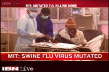 Swine flu strain in India may carry dangerous mutations: MIT study