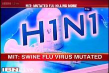 Swine flu virus mutated, no reason to panic, say experts