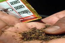 All forms of chewable tobacco banned in Delhi from Monday