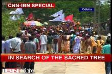 Watch: Odisha's Banajaga yatra