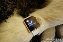 Photos: China's richest man's son gifts 2 gold Apple watches to his pet dog