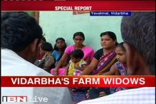 Maharashtra turns 55 today,  plight of farm widows remains a blot on state's record