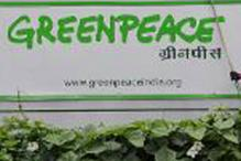 Madras HC orders interim stay on cancellation of Greenpeace's FCRA registration