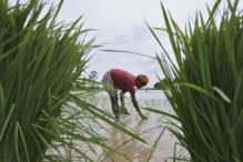 Smart agriculture: Yielding high agriculture with frugal use of water