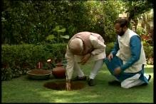 PM Modi marks World Environment Day by planting a sapling