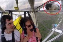 A pilot gets the shock of his life when he finds an unexpected passenger in the form of a cat!