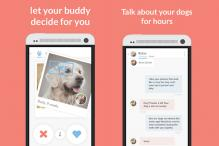 Tinder-style dating app for dogs helps you find the perfect match for your pet pooch
