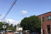 Hundreds of sex toys dangling from power lines in Portland, Oregon